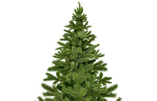 Max Pawn to Give Free Live Christmas Trees to First Responders December 10