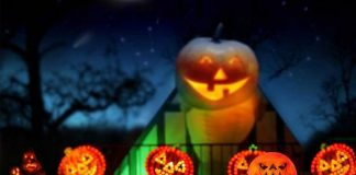"""Opportunity Village Transforms The Magical Forest into """"HallOVeen"""" Fun During Weekends in October"""