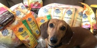 Hearts Alive Village Animal Rescue Provides Pet Food to the Community