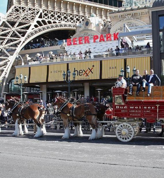 Budweiser Clydesdales Trot Down Las Vegas Boulevard to Commemorate Grand Opening of Beer Park at Paris Las Vegas