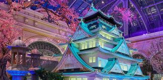 Bellagio's Conservatory & Botanical Gardens Celebrates Japan With Vibrant Spring Display Through June 15
