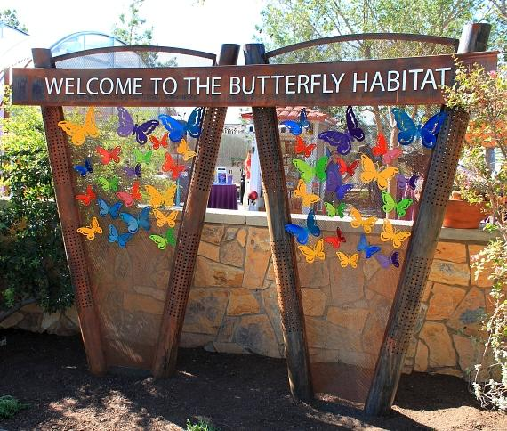 Springs Preserve Spring Butterfly Habitat Takes Flight March 9