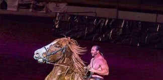 "Acrobatic Equestrian Production ""Gladius The Show"" Coming to the South Point Arena and Equestrian Center on July 21"