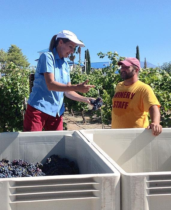 Co-Owner Gretchen Loken with Winery Staff during Zinfandel Harvest at Pahrump Valley Winery
