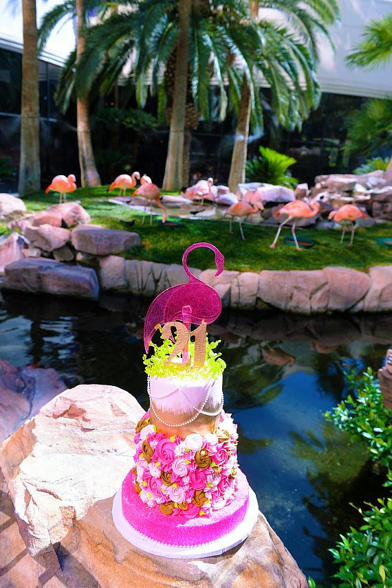 Flamingo Wildlife Habitat celebrates Peachy the flamingo's 21st birthday with a faux cake
