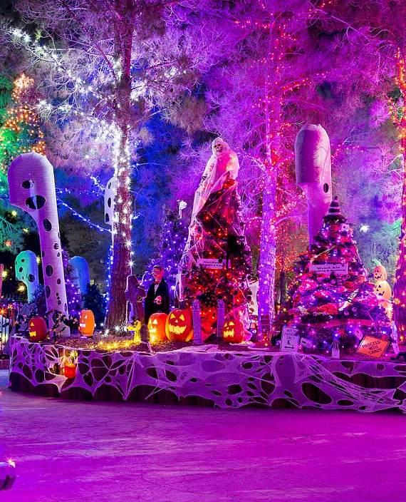 Extensive HallOVeen pumpkin display at Opportunity Village's the Magical Forest.