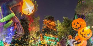 "Opportunity Village Kicks off Ticket Sales for 7th Annual ""HallOVeen"" at the Magical Forest October 11-13 and 18-31"