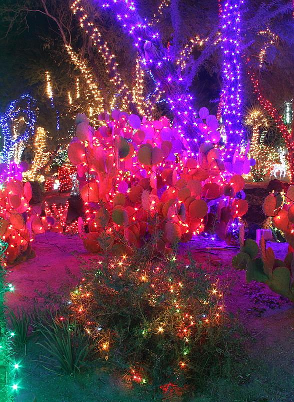 Tickets Now Available For Ethel M Chocolates 22nd Annual Holiday Cactus Lighting Event