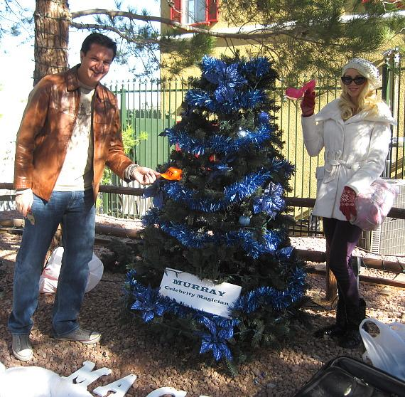 Lefty and Chloe with Christmas Tree at Opportunity Village
