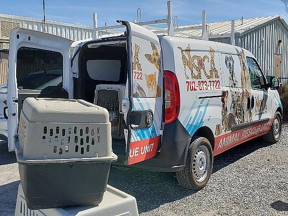 Nevada SPCA Rescues Animals from Desert Haven Animal Society