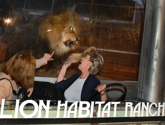 """Lions & Wine Oh My!"" at Lion Habitat Ranch benefits The Boys & Girls Clubs of Southern Nevada"