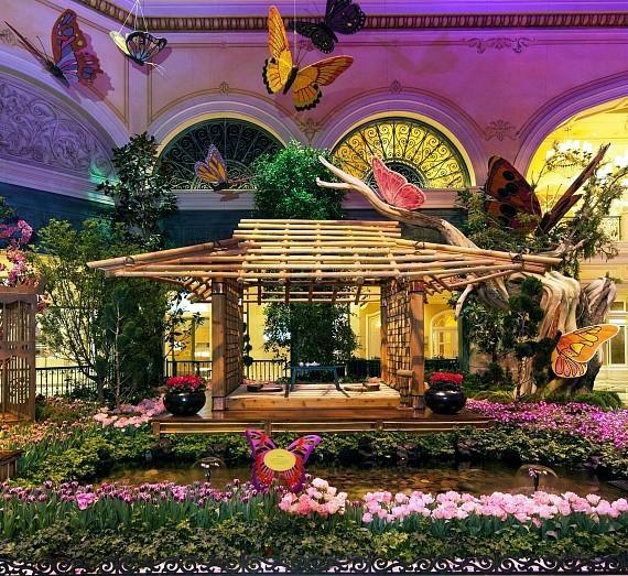 Bellagio's Conservatory & Botanical Gardens - South Bed
