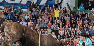 South Point to Kick off Another Year of Bull Riding With the Annual Tuff Hedeman Tour in Las Vegas Feb. 29