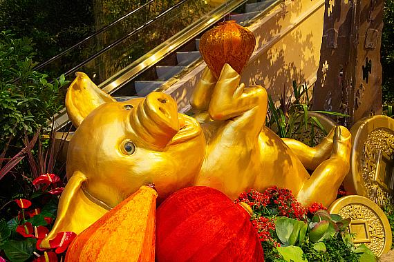 The Year of the Pig - Chinese New Year 2019 - The Venetian Resort Las Vegas