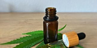 Organic Wellness: Know the Difference between CBD Tincture and CBD Oil