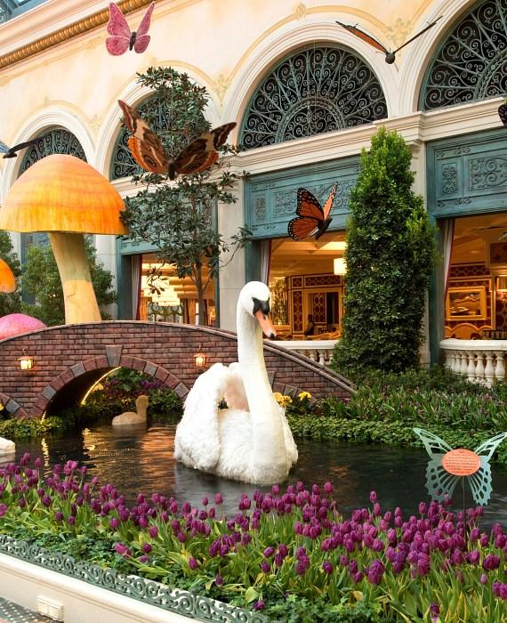 Spring Flora and Butterflies are Abloom at Bellagio's Conservatory & Botanical Gardens