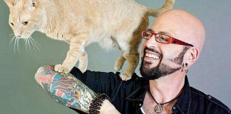 Viva Cat Vegas! Cat Camp Hosted by Animal Planet's Jackson Galaxy Expands to Las Vegas at the Industrial Event Space November 9-10, 2019