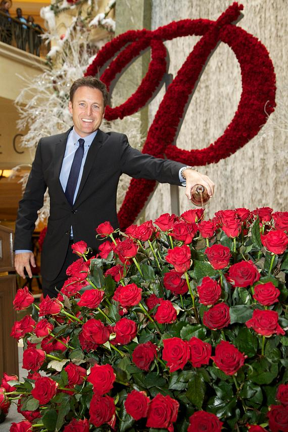 Chris Harrison unveils newest member of the Rose Family - The Palazzo Rose